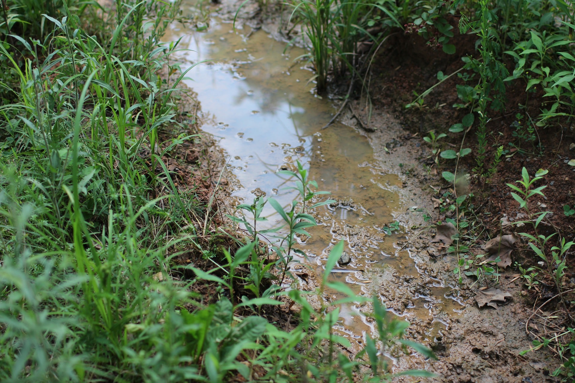 saturated soil
